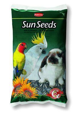 SunSeeds - /слънчогледови семки/